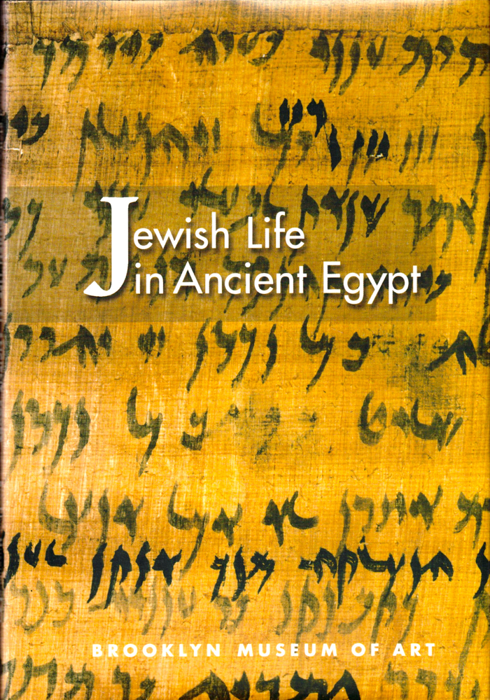 Jewish Life in Ancient Egypt: A Family Archive From the Nile Valley. Edward Bleiberg.